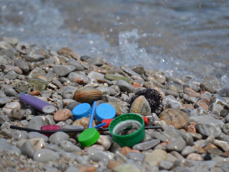 Derelict Fishing Gear Management System in the Adriatic Region
