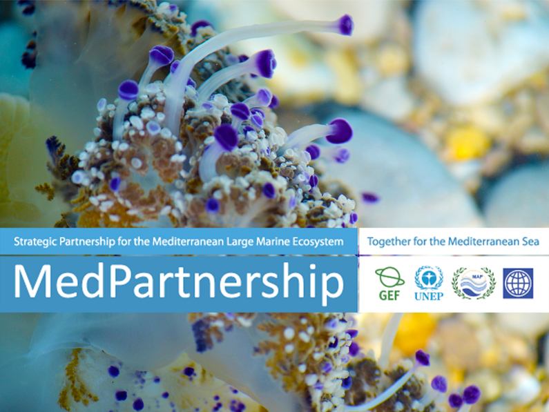 The Strategic Partnership for the Mediterranean Sea Large Marine Ecosystem