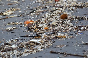 Microplastics in Arrilas beach