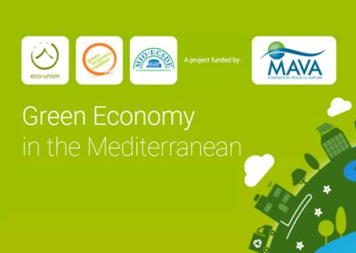 Green Economy in the Mediterranean