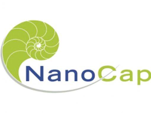 Nanotechnology Capacity Building NGOs