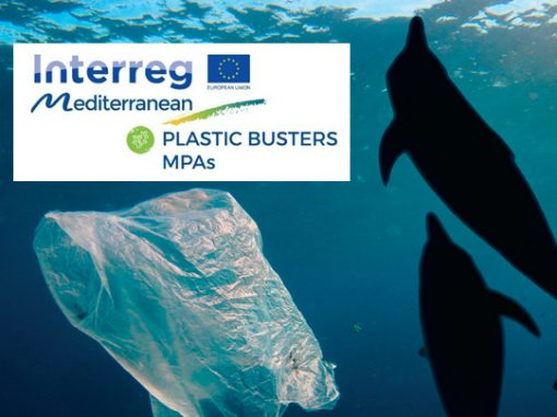 PlasticBusters MPAs