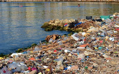 European Parliament attentive to the need for effectively curbing plastics in our life