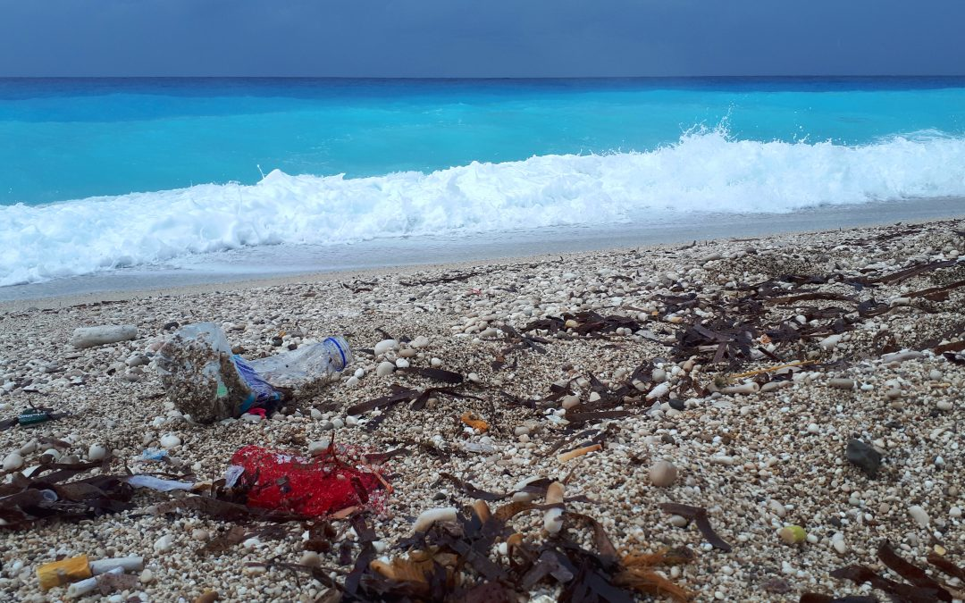 Join the Marine Litter Watch to track marine litter!