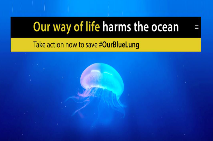 Save #OurBlueLung: 35 NGOs join forces and urge EU ministers to commit to 20 measures to protect our seas by 2020