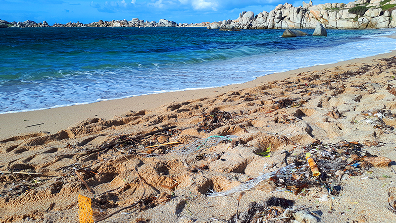 Marine litter is building up in Mediterranean coastal and marine protected areas, reveals new report