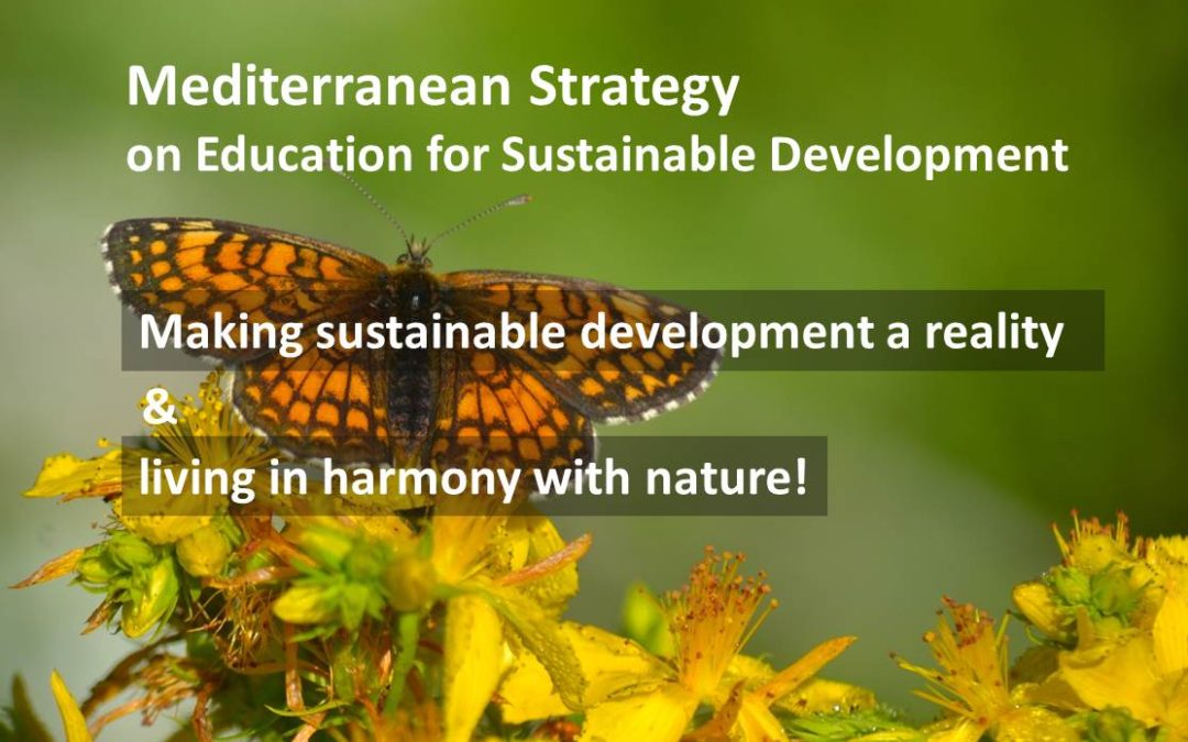 Suivi de l'état d'avancement de la directive MSESD 2019 : progrès, leçons apprises et perspectives