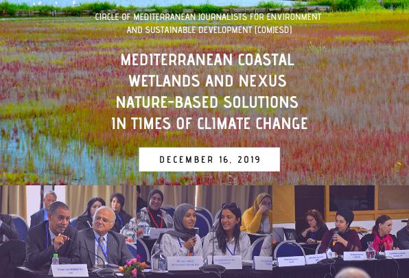 Les journalistes et les ONG membres de MIO-ECSDE sont désormais mieux équipés pour protéger les zones humides côtières de la Méditerranée en voie de disparition