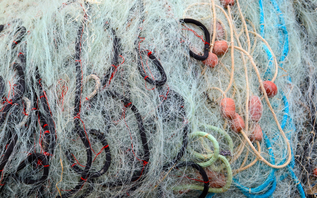 Moving forward on EU measures to ensure a circular design of fishing gear for the reduction of environmental impacts