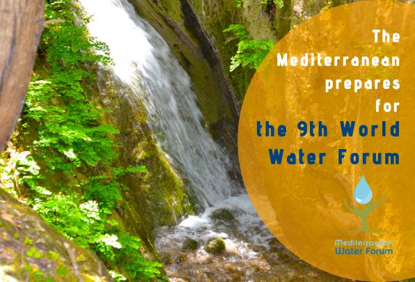 MIO-ECSDE in the Steering Committee of the 4th Mediterranean Water Forum
