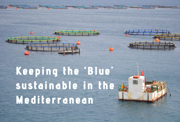 MIO-ECSDE contributes to the UfM online consultation on Blue Economy
