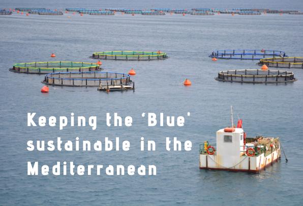MIO-ECSDE contributes to the UfM online consultation on Blue Economy