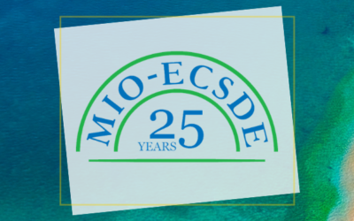 25th AGM of MIO-ECSDE applauds progress and looks ahead with hope for a face-to-face meeting in 2021