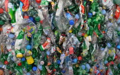 Europe to reduce primary raw material use, stop reusable materials waste and encourage longer product lifecycles