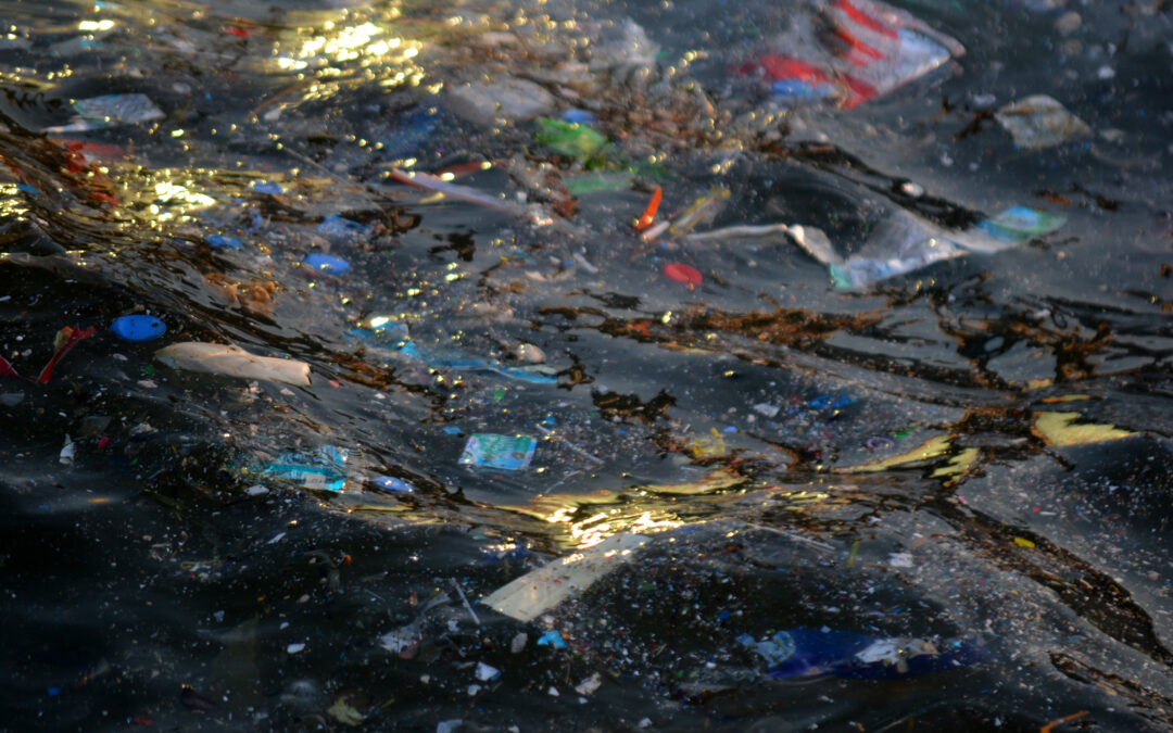 Keeping Europe's seas clean: a new manual for harmonised marine litter monitoring