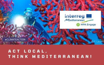 Lively discussions on tackling climate change in Mediterranean MPAs held at the MPA Engage capitalization conference