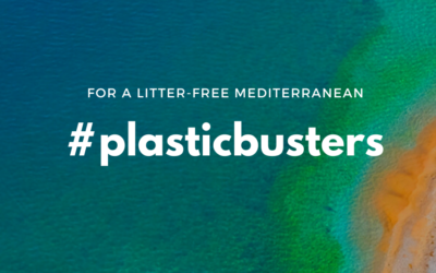 The Plastic Busters MPAs capitalization event: a stepping stone in consolidating marine litter management efforts in Mediterranean MPAs