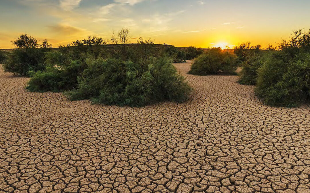 Climate Change: The rapidly increasing challenge for the Mediterranean