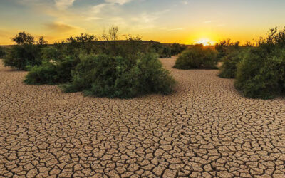 MIO-ECSDE organises a high-level online panel discussion on Climate Change: the rapidly increasing challenge for the Mediterranean, September 21st